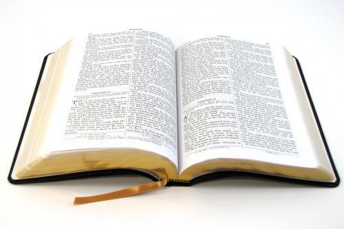Bible Verses of the Week